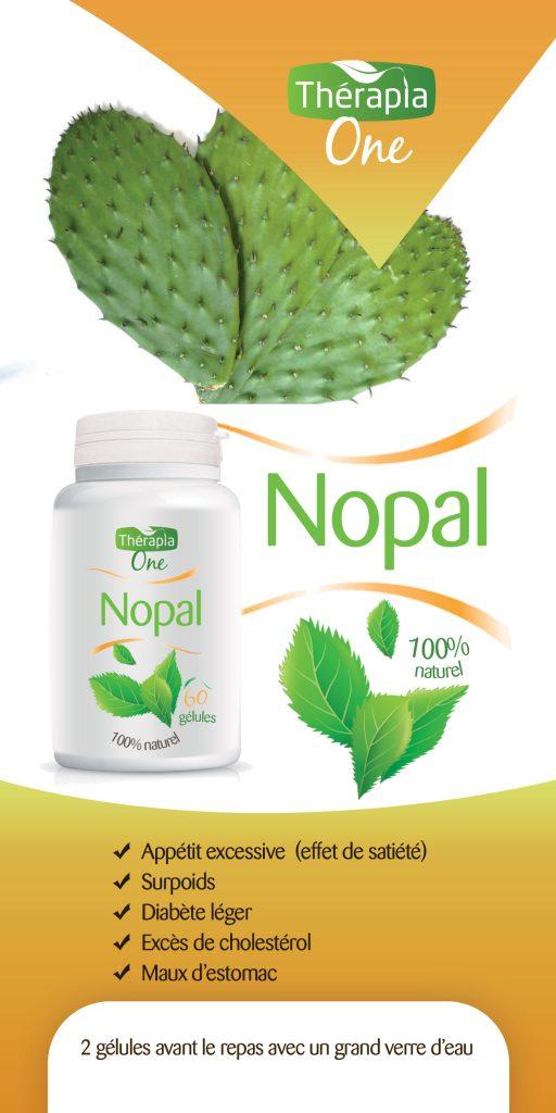 Flyer-Nopal-recto